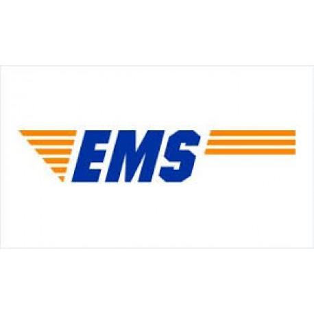 特別配送(DHL or EMS)送料