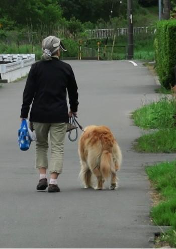 ペットも武漢ウィルス(肺炎)に感染の危険性!飼い主から飼い主へ