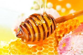 「ハチミツは市販薬や抗生物質よりも風邪に効く」との研究結果