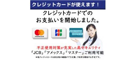 クレジットカードの利用を開始しました。