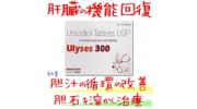 ウリシーズ (Ulyses) 300mg  100錠/箱│ウルソの通販用の正規ジェネリック 肝機能を改善に効果