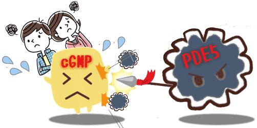 PDE5はcGMPの働きを抑制する。