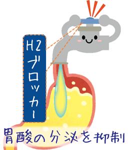 h2ブロッカーが胃酸の分泌を抑える
