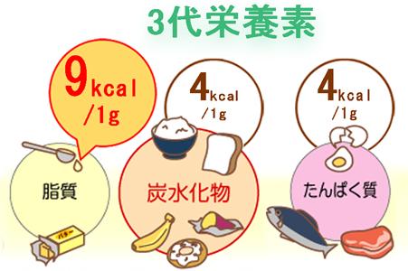 3代栄養素で脂質が高カロリー