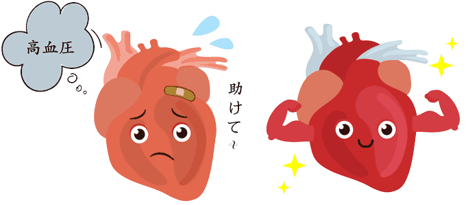 高血圧の調整をし心臓を休ませる