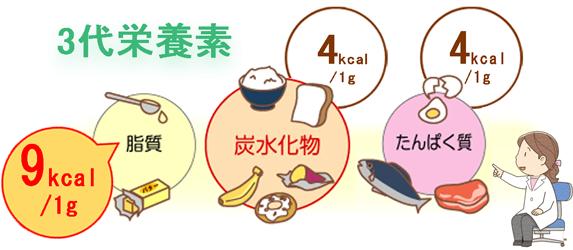 3代栄養素で確認、脂質の危険性